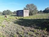 5 Acres Tbd Roadrunner Road - Photo 15
