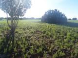 5 Acres Tbd Roadrunner Road - Photo 8