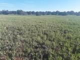 5 Acres Tbd Roadrunner Road - Photo 9