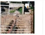 1625 Pecos Road - Photo 70