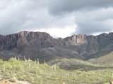 384 Highlands Drive - Photo 13