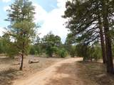 2019 Judy Ranch Road - Photo 2