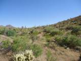 14510 Desert Tortoise Trail - Photo 1