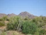 14510 Desert Tortoise Trail - Photo 2