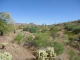 14510 Desert Tortoise Trail - Photo 4