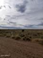 Lot 154 River Meadows Ranch - Photo 6