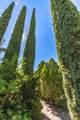 901 Tombstone Canyon Canyon - Photo 149