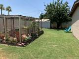 14807 Flamenco Drive - Photo 38