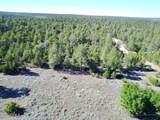 1758 Eskimo Lane - Photo 2