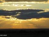 TBD 35.90 Acres Sanders - Photo 15