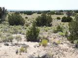 TBD 35.90 Acres Sanders - Photo 3