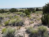 TBD 35.90 Acres Sanders - Photo 4