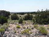 TBD 35.90 Acres Sanders - Photo 5