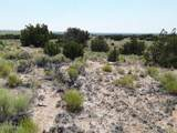 TBD 35.90 Acres Sanders - Photo 6