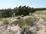 TBD 35.90 Acres Sanders - Photo 7