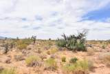 0 Javelina Road - Photo 1