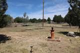 1165 Lone Pine Dam Road - Photo 24