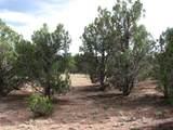 4982 Elk Trail Road - Photo 2