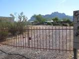 3164 Cactus Wren Street - Photo 2