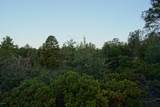 1805 Desert Mimosa Drive - Photo 13