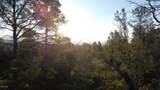 1805 Desert Mimosa Drive - Photo 3