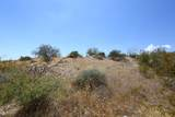 13316 Blue Coyote Trail - Photo 4