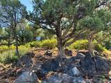 1105 Sequoia Circle - Photo 1