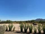 14245 Monterra Way - Photo 33