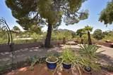 7828 Carefree Estates Circle - Photo 17