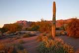 9431 Canyon View Trail - Photo 20