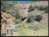 000 Trilby Mine - Photo 1