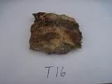 000 Trilby Mine - Photo 12