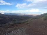 000 Trilby Mine - Photo 6
