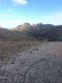 000 Trilby Mine - Photo 7