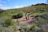 9333 Canyon View Trail - Photo 15
