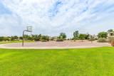 14842 Aldea Drive - Photo 41