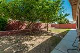 6508 Crocus Drive - Photo 41