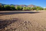 3791 Gambel Quail Way - Photo 8