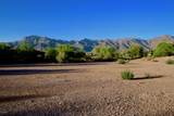 3791 Gambel Quail Way - Photo 9