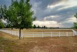 2292 Quarter Horse Trail - Photo 3