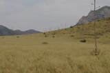 049-D Renagade Trail - Photo 16