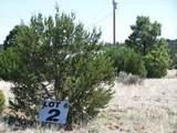 3351 Tonto Drive - Photo 2