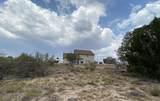 1327 Trev View Trail - Photo 36
