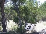 3341 Tonto Drive - Photo 2