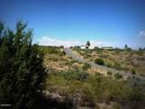 20039 Brahma Drive - Photo 15
