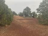 Show Low Pines Unit 10 Lot 296 - Photo 13