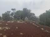 Show Low Pines Unit 10 Lot 296 - Photo 14