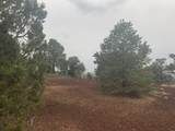 Show Low Pines Unit 10 Lot 296 - Photo 15