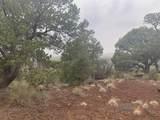 Show Low Pines Unit 10 Lot 296 - Photo 19