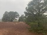 Show Low Pines Unit 10 Lot 296 - Photo 22